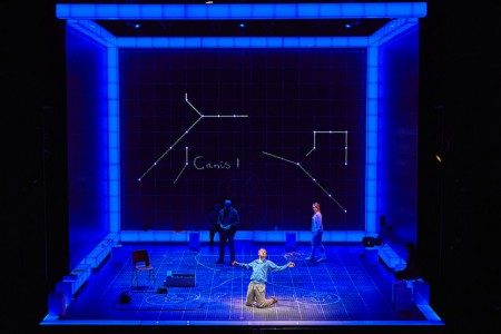 Interactive set display of The Curious Incident