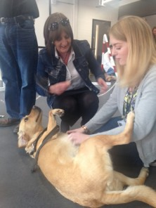 Students playing with MMU dogs