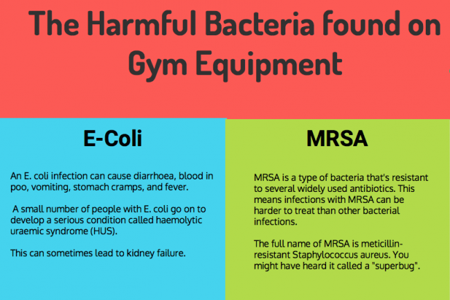 Information about E-Coli and MRSA