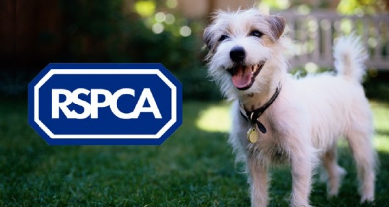 Animal welfare organisations RSPCA and Dog's Trust back new