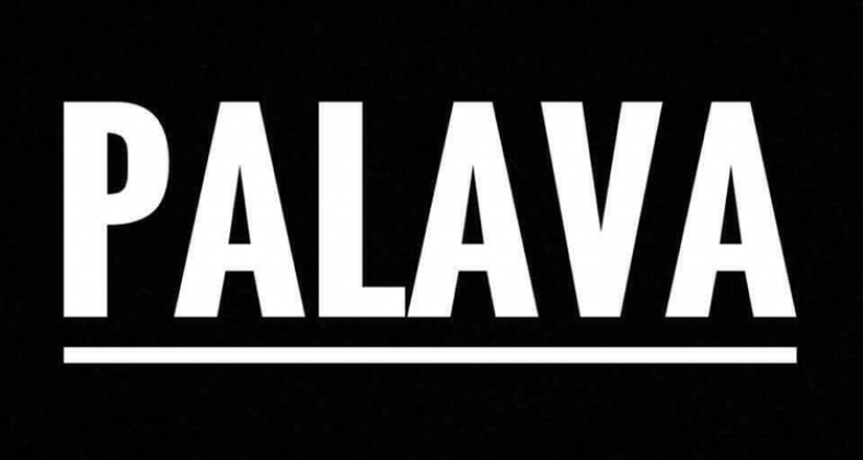 Palava, Manchester indie band